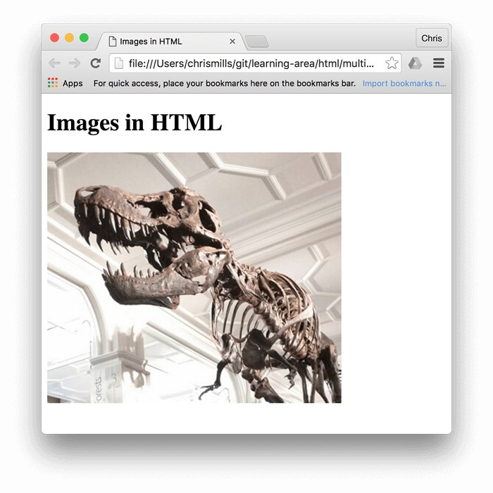 A basic image of a dinosaur, embedded in a browser, with Images in HTML written above it